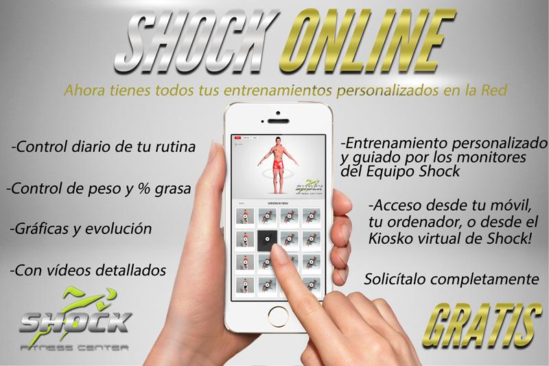 Shock-online-opt
